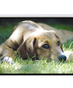 PSAC100-Brateck Electric Projector Screen 2.0x1.5m (4:3 ratio) with Remote Control