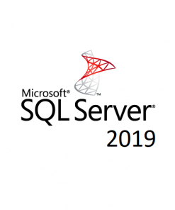228-11477-Microsoft SQL Server 2019 Standard - Licence - 1 Server - OLP: Open Business - Windows - Single Language