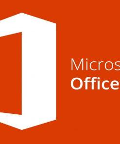 79P-05729-Microsoft Office Professional Plus 2019 - Licence - 1 PC - Volume Licence - Windows - Single Language