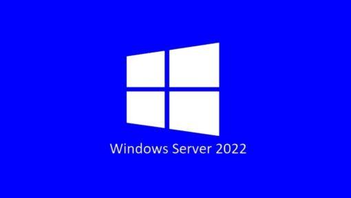 R18-06448-Microsoft Server Standard 2022 - 1 User CAL Pack OEM